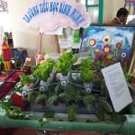 vườn thủy canh- TH Bình Minh